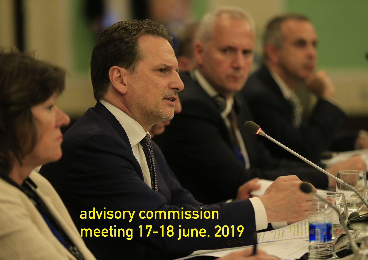 ADVISORY COMMISSION MEETING 17 JUNE 2019