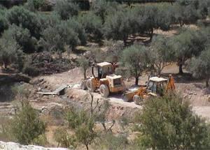 الأضرار البيئية للجدار