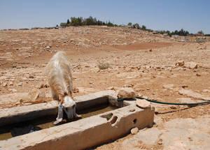 الجفاف المتواصل