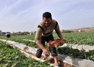 غزة: الحياة تحت الحصار