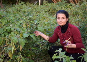 "When Shareen Samra wanted to start a farm in 2013 to grow tomatoes, aubergines and peppers, nobody would give her any money. Luckily, UNRWA was willing to support her. ""I started with a very small loan, of US$ 420, just to buy some seeds, plastic bags to pot the saplings and fertilizer. The first year, I grew 2,000 saplings. Every year, my business grows. I invest the loans, as well as the profits from my business."" Now, in 2018, she has 10,000 saplings and is on her 6th loan. © 2018 by Fernande van Tets"