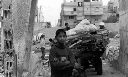 النداء العاجل للأراضي الفلسطينية المحتلة 2008