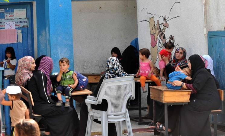 Gaza Situation Report 7