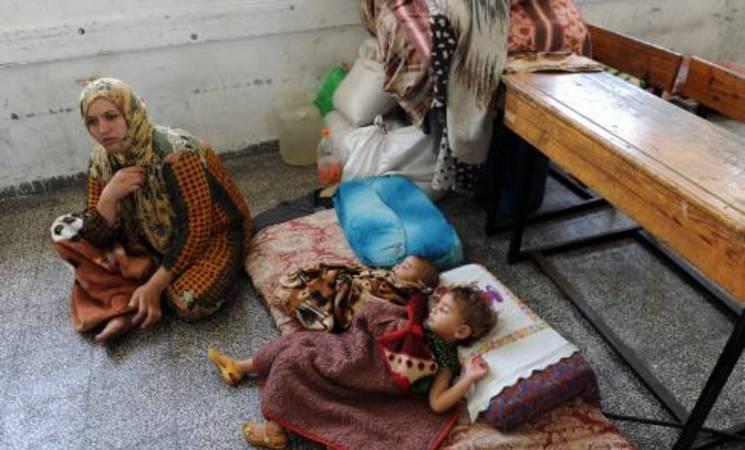 Gaza Situation Report 11