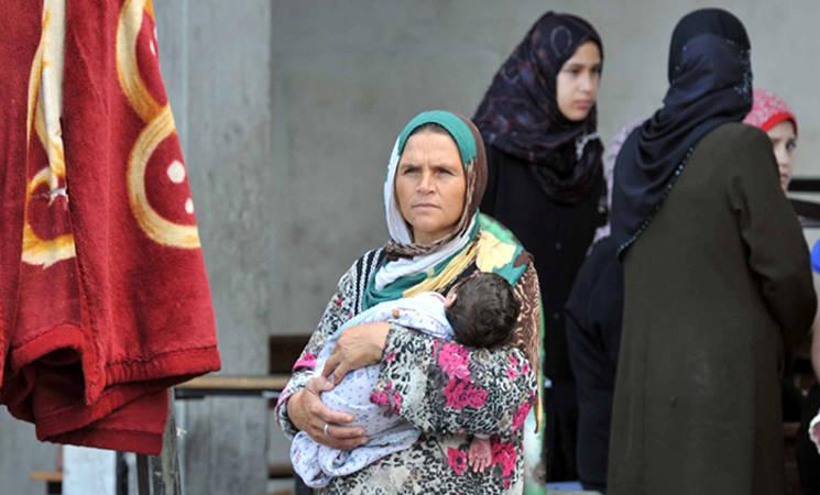 Gaza Situation Report 12