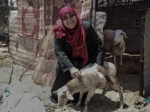 """تلقت اللاجئة الفلسطينية فايزة لافي – 47 عام – من رفح التي تعمل في تجارة المواشي تدريباً حول إدارة مشروع العمل ضمن مشروع """"برنامج تمكين النساء المعيلات لأسرهن"""" المنفذ من قبل مبادرة النوع الاجتماعي في الأونروا. جميع الحقوق محفوظة للأونروا 2018، تصوير خليل عدوان"""