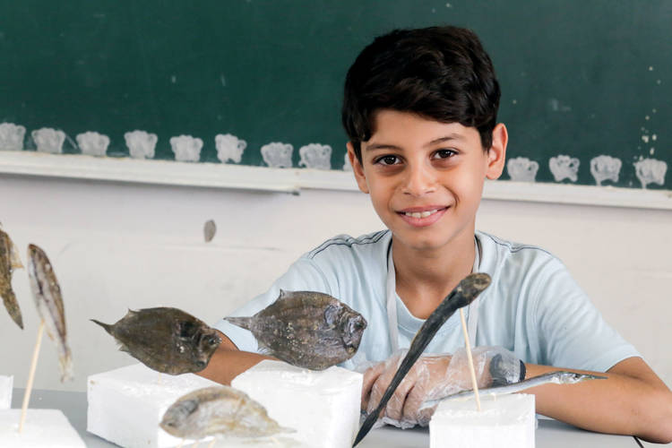 Rasmi Al Tibi, 11 years old, showcases his taxidermy projects during the Expo Tech. © 2017 UNRWA Photo by Tamer Hamam