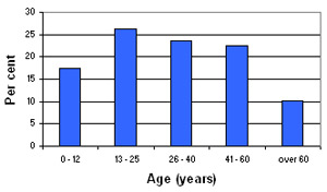 Graph of Burj Barajneh's demographic profile