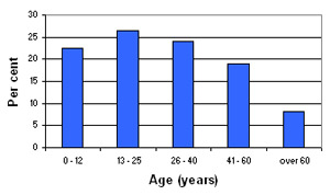 Graph of Rashidieh's demographic profile
