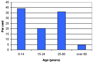 Graph of Dheisheh's demographic profile
